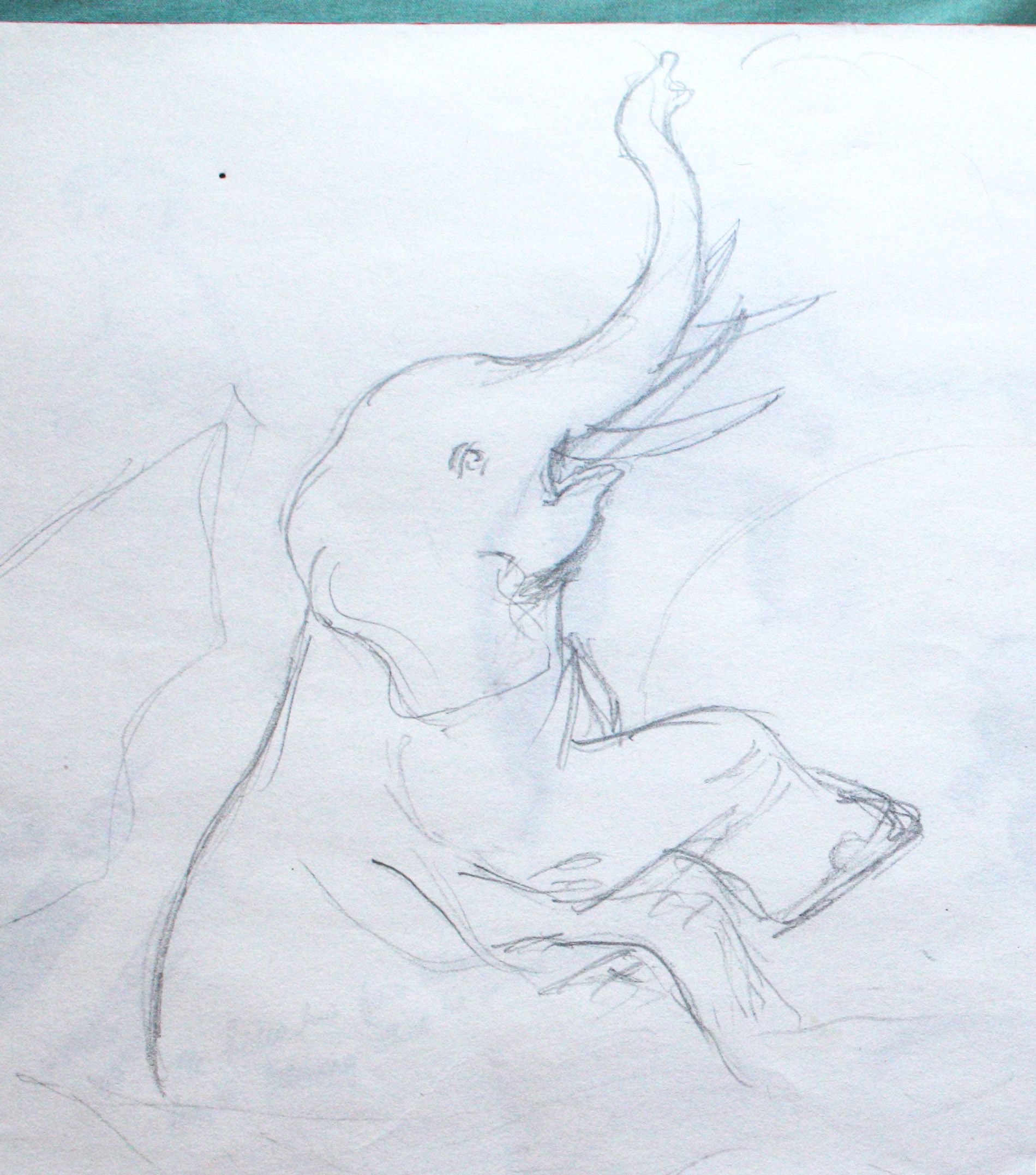 More sketches of elephants | Through the round window